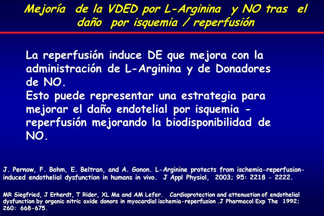 Mejoría de la VDED por L-Arginina y NO tras el daño por isquemia / reperfusión