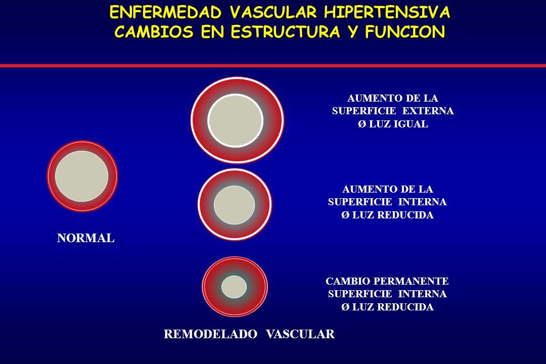 ENFERMEDAD VASCULAR HIPERTENSIVA CAMBIOS EN ESTRUCTURA Y FUNCION