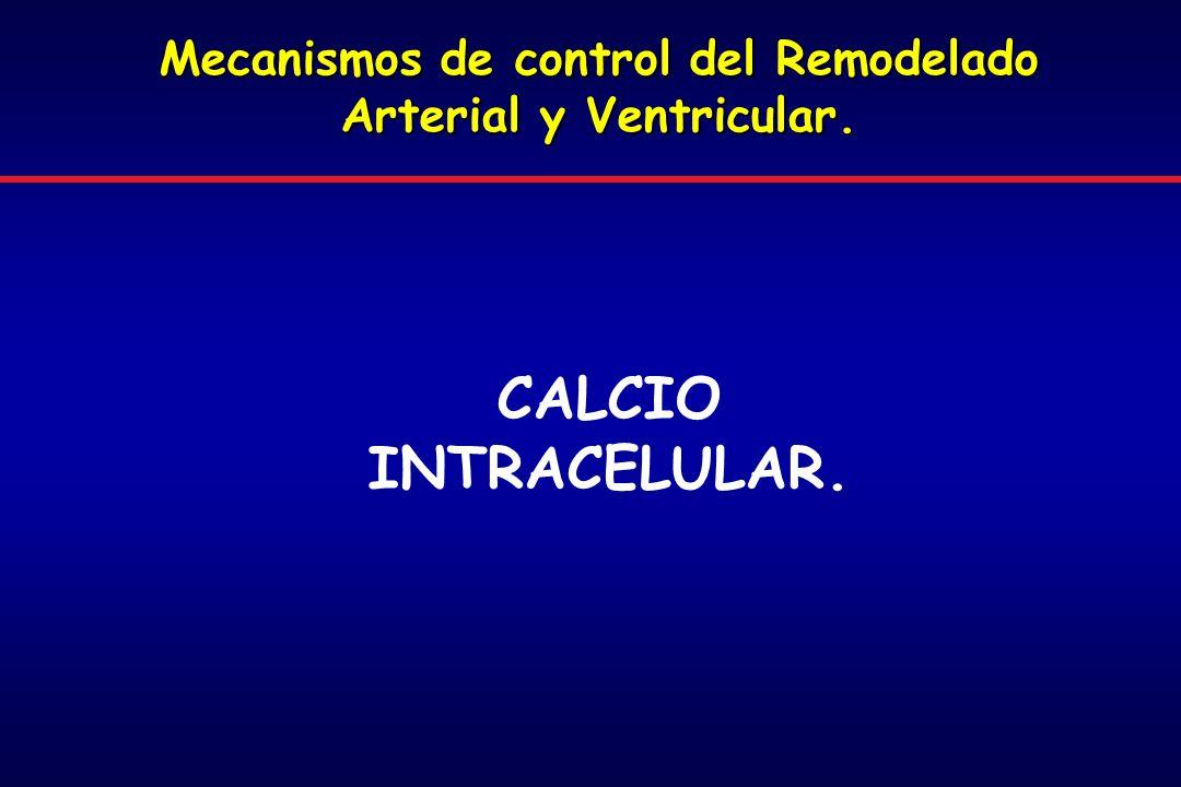 Mecanismos de control del Remodelado Arterial y Ventricular.