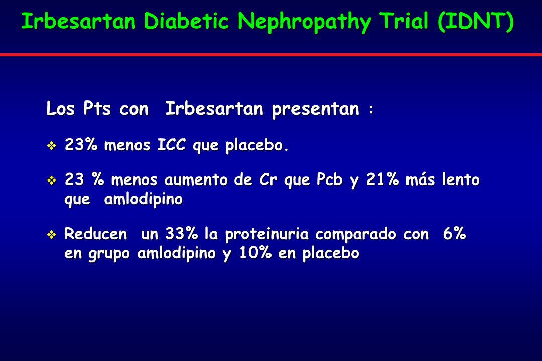 Irbesartan Diabetic Nephropathy Trial (IDNT)