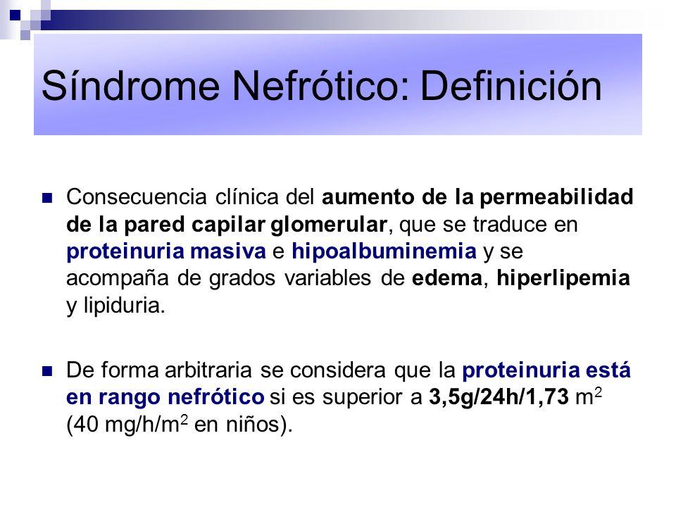 Síndrome Nefrótico: Definición