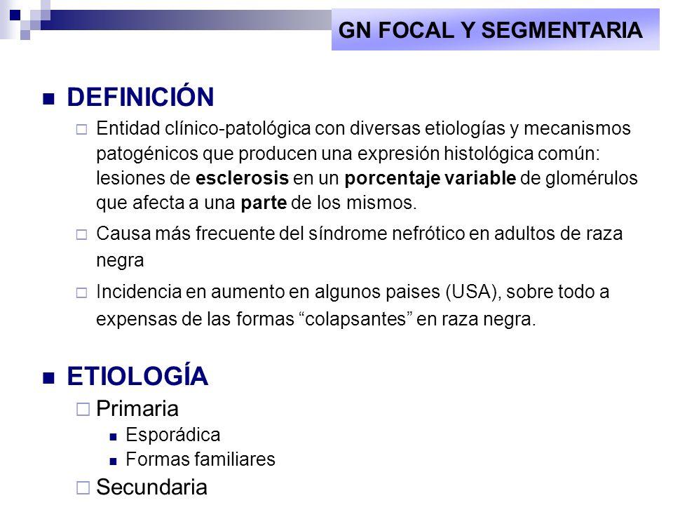 DEFINICIÓN ETIOLOGÍA GN FOCAL Y SEGMENTARIA Primaria Secundaria