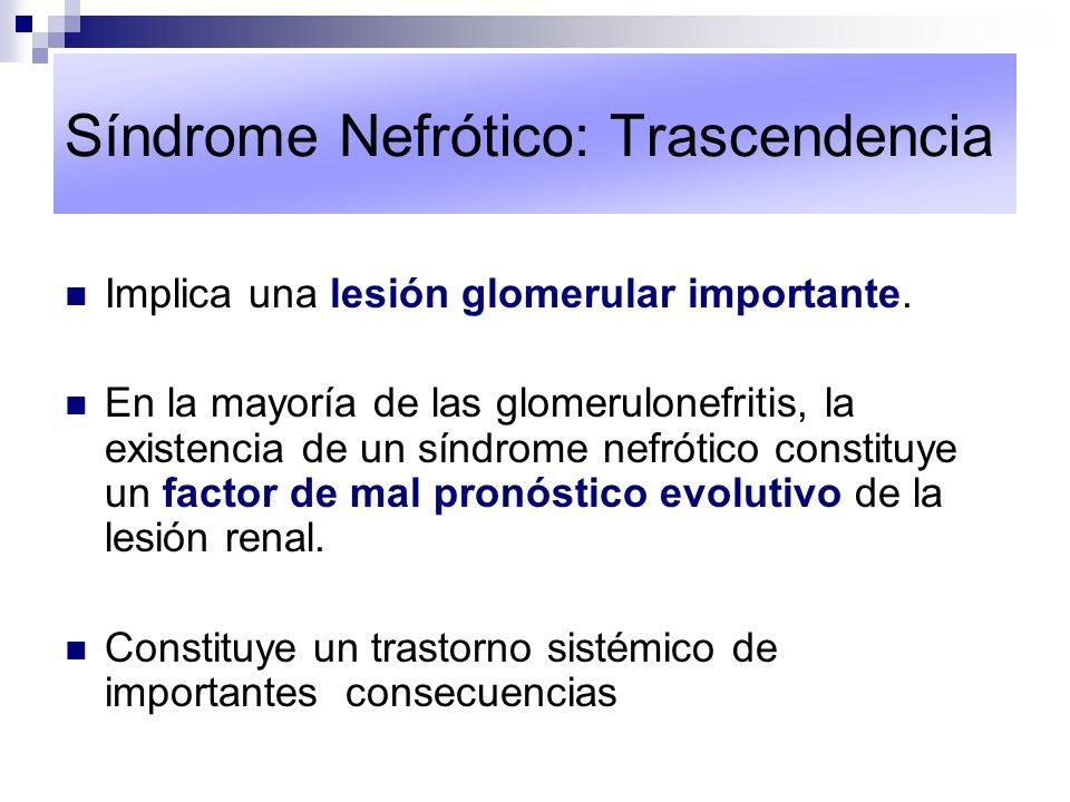 Síndrome Nefrótico: Trascendencia