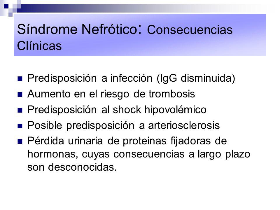 Síndrome Nefrótico: Consecuencias Clínicas
