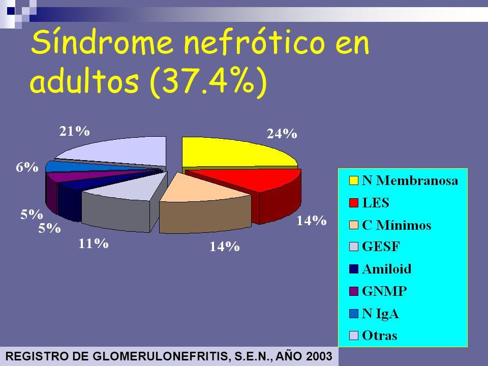 Síndrome nefrótico en adultos (37.4%)
