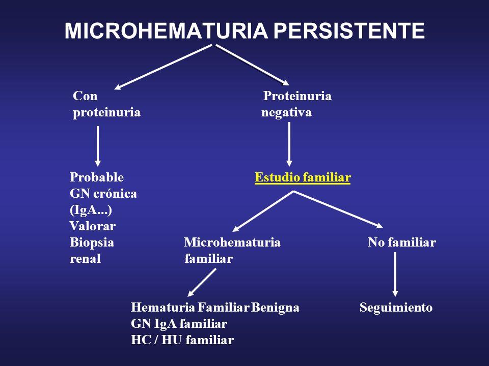 MICROHEMATURIA PERSISTENTE