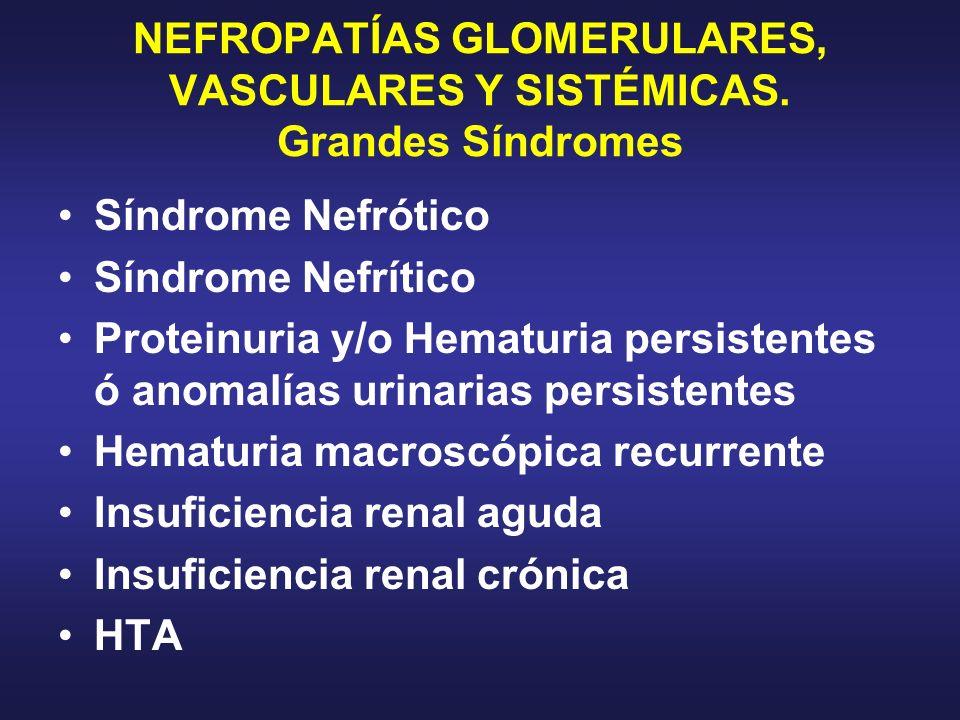 NEFROPATÍAS GLOMERULARES, VASCULARES Y SISTÉMICAS. Grandes Síndromes
