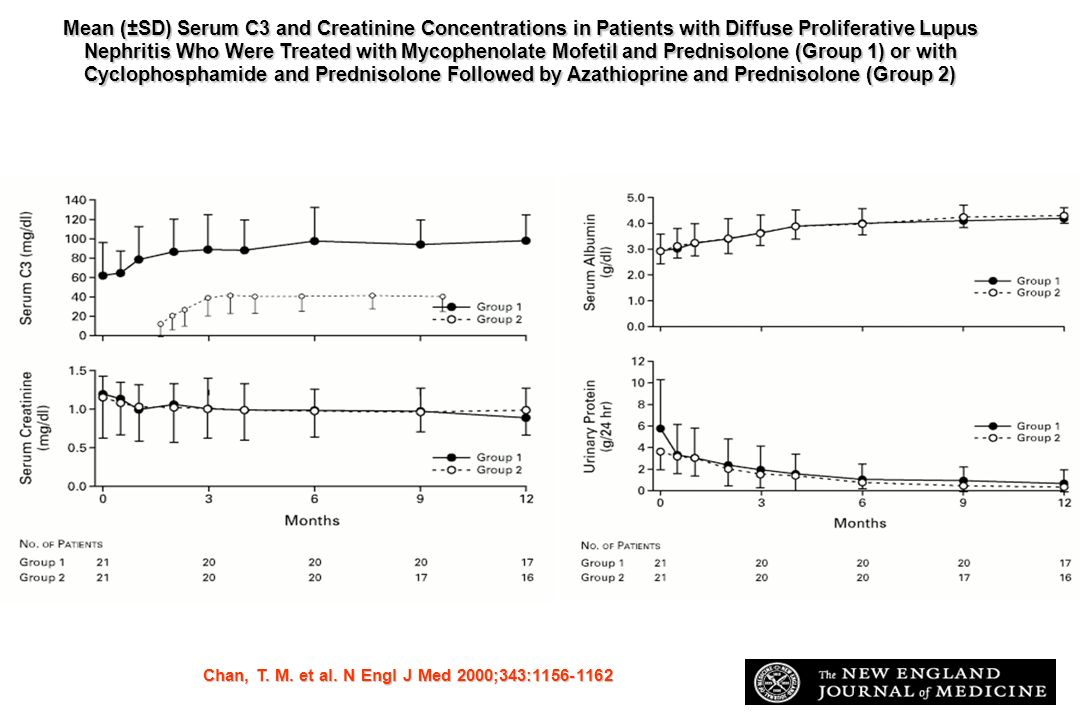 Mean (±SD) Serum C3 and Creatinine Concentrations in Patients with Diffuse Proliferative Lupus Nephritis Who Were Treated with Mycophenolate Mofetil and Prednisolone (Group 1) or with Cyclophosphamide and Prednisolone Followed by Azathioprine and Prednisolone (Group 2)