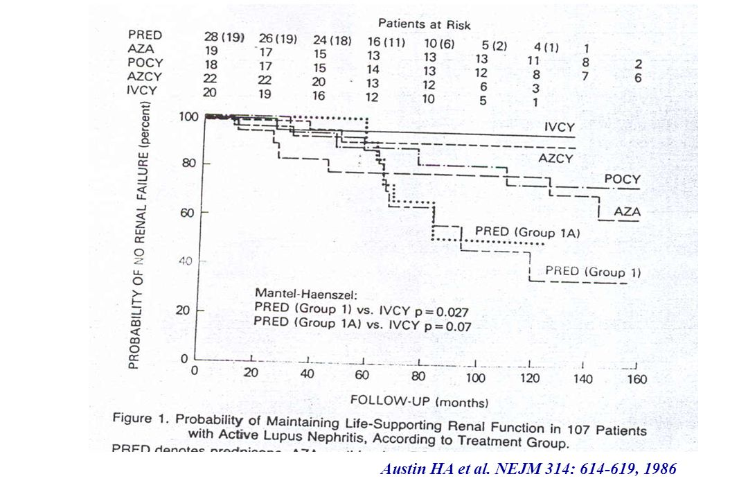 Austin HA et al. NEJM 314: 614-619, 1986