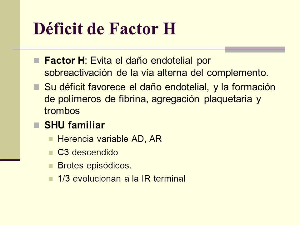 Déficit de Factor H Factor H: Evita el daño endotelial por sobreactivación de la vía alterna del complemento.