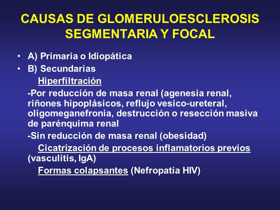 CAUSAS DE GLOMERULOESCLEROSIS SEGMENTARIA Y FOCAL