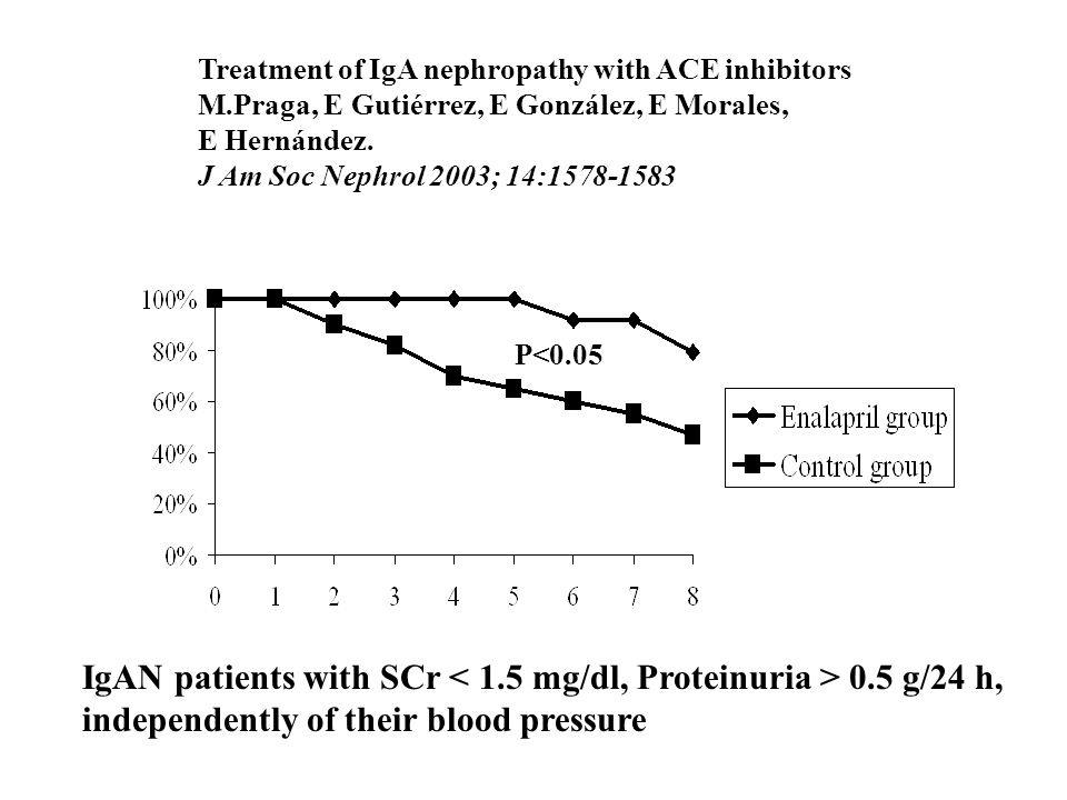 IgAN patients with SCr < 1.5 mg/dl, Proteinuria > 0.5 g/24 h,