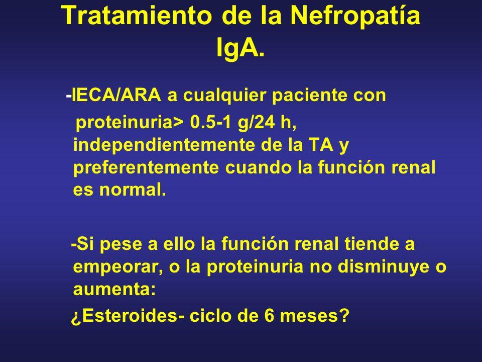 Tratamiento de la Nefropatía IgA.