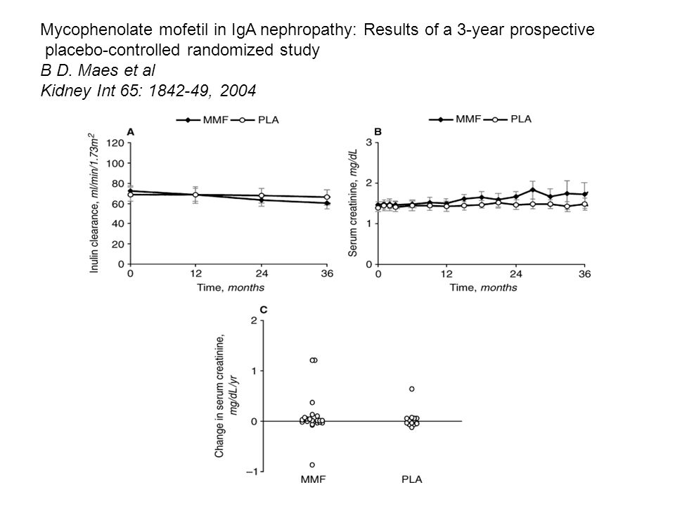Mycophenolate mofetil in IgA nephropathy: Results of a 3-year prospective