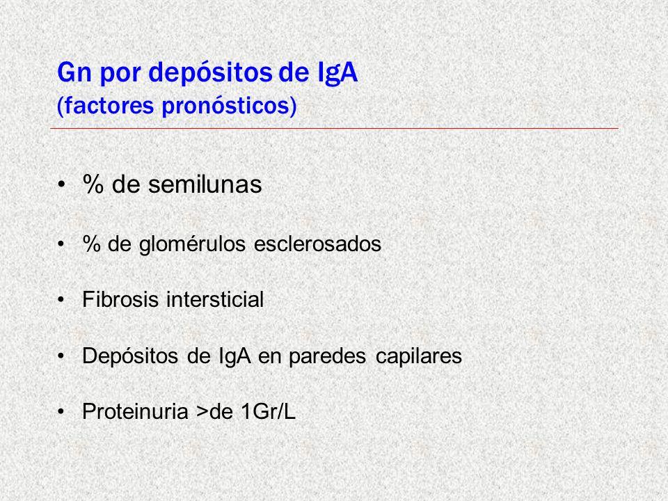 Gn por depósitos de IgA (factores pronósticos)