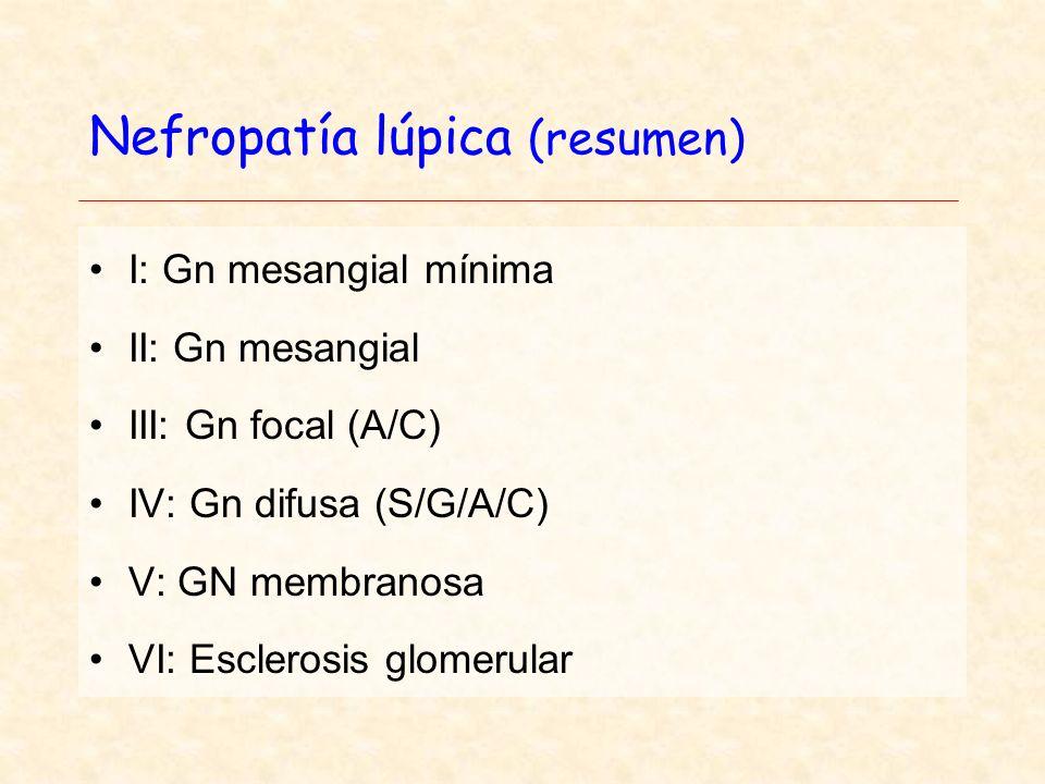 Nefropatía lúpica (resumen)