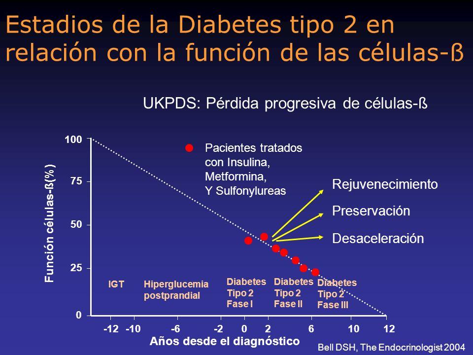 Estadios de la Diabetes tipo 2 en relación con la función de las células-ß