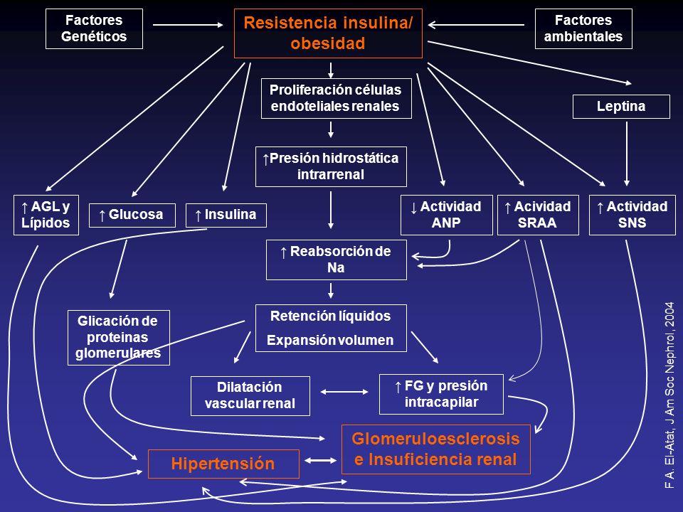Resistencia insulina/ obesidad