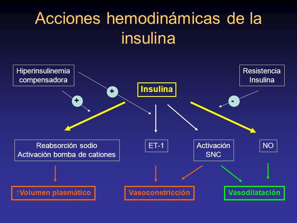Acciones hemodinámicas de la insulina