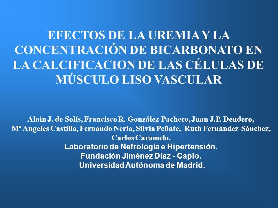 EFECTOS DE LA UREMIA Y LA CONCENTRACIÓN DE BICARBONATO EN LA CALCIFICACION DE LAS CÉLULAS DE MÚSCULO LISO VASCULAR