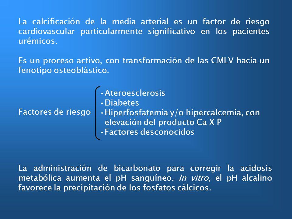 La calcificación de la media arterial es un factor de riesgo cardiovascular particularmente significativo en los pacientes urémicos.