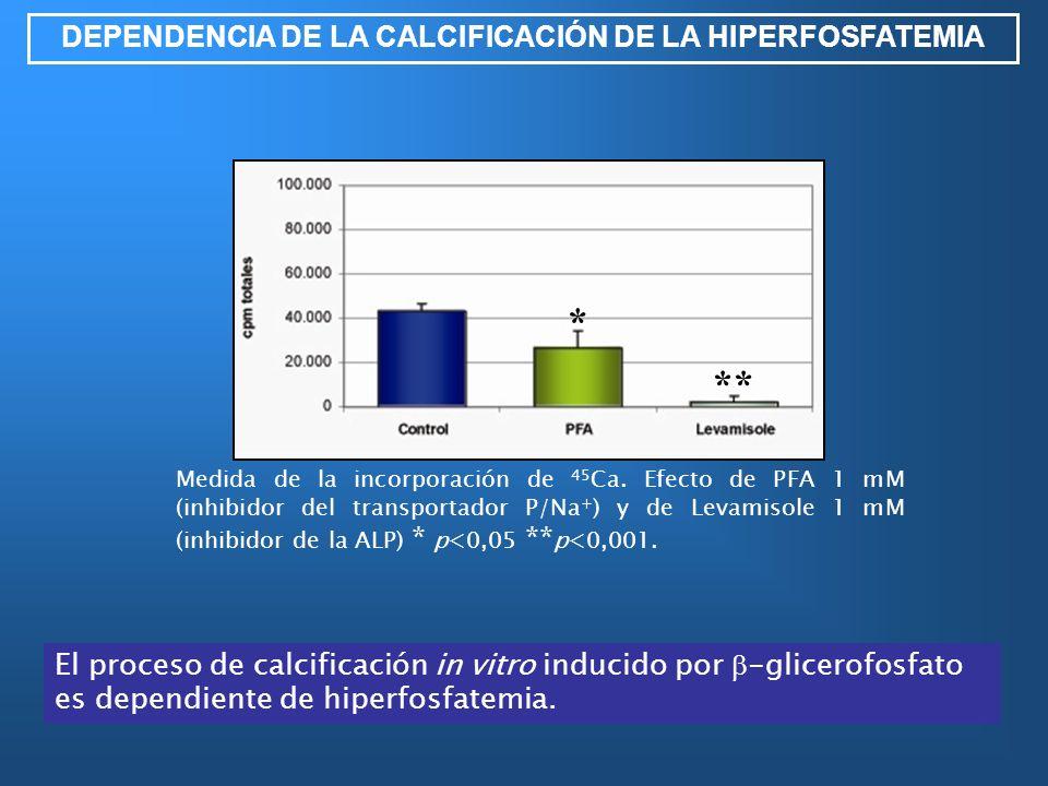 DEPENDENCIA DE LA CALCIFICACIÓN DE LA HIPERFOSFATEMIA