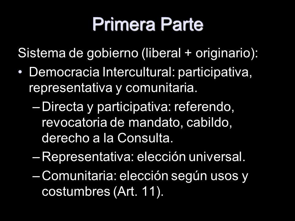 Primera Parte Sistema de gobierno (liberal + originario):