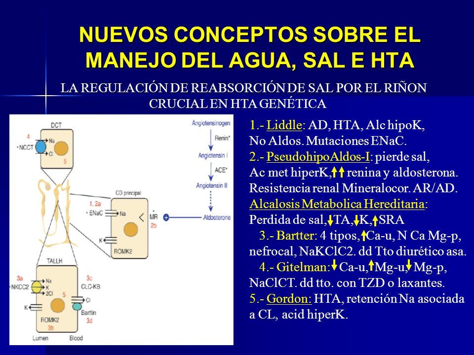 NUEVOS CONCEPTOS SOBRE EL MANEJO DEL AGUA, SAL E HTA