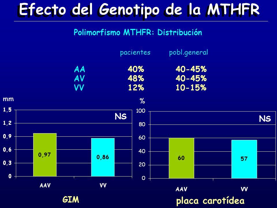 Efecto del Genotipo de la MTHFR