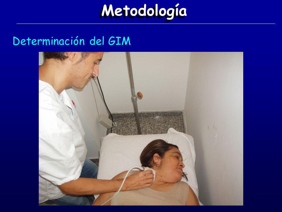 Metodología Determinación del GIM