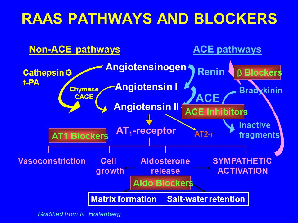RAAS PATHWAYS AND BLOCKERS