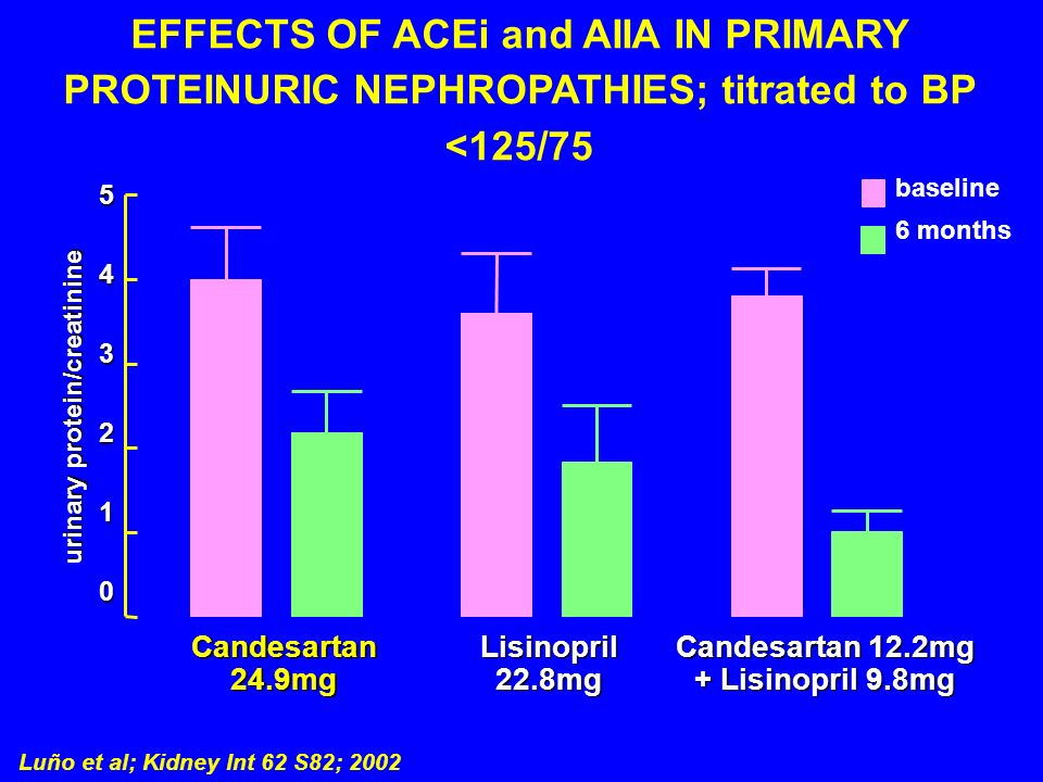 EFFECTS OF ACEi and AIIA IN PRIMARY PROTEINURIC NEPHROPATHIES; titrated to BP <125/75