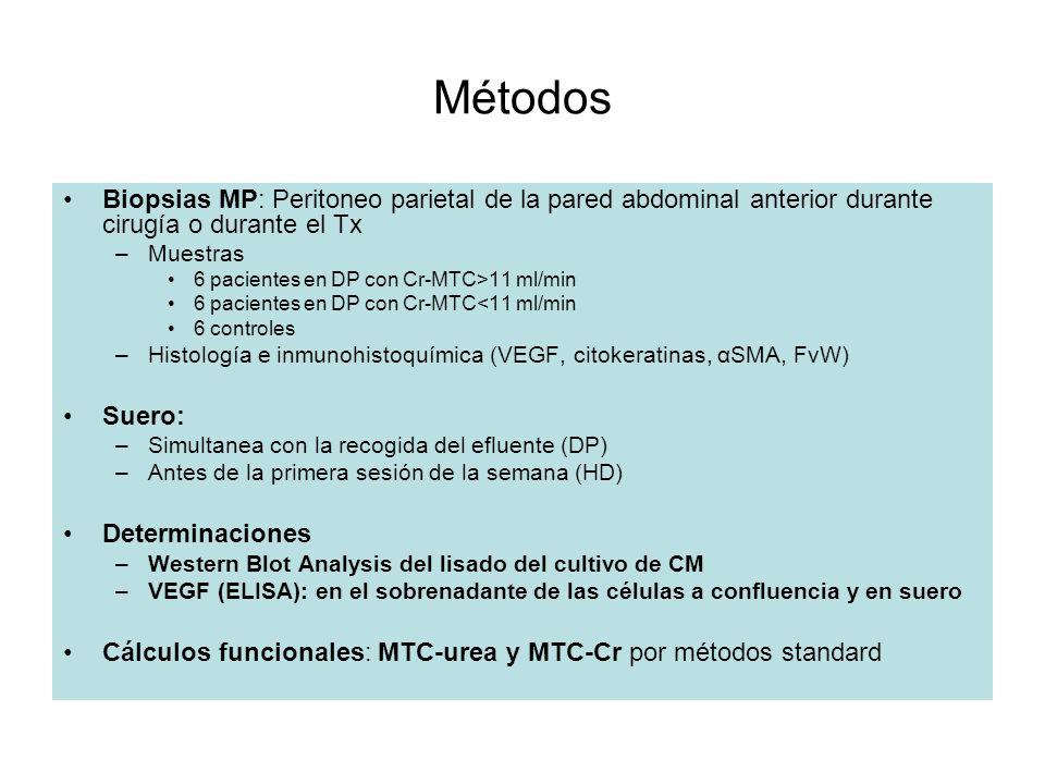 Métodos Biopsias MP: Peritoneo parietal de la pared abdominal anterior durante cirugía o durante el Tx.