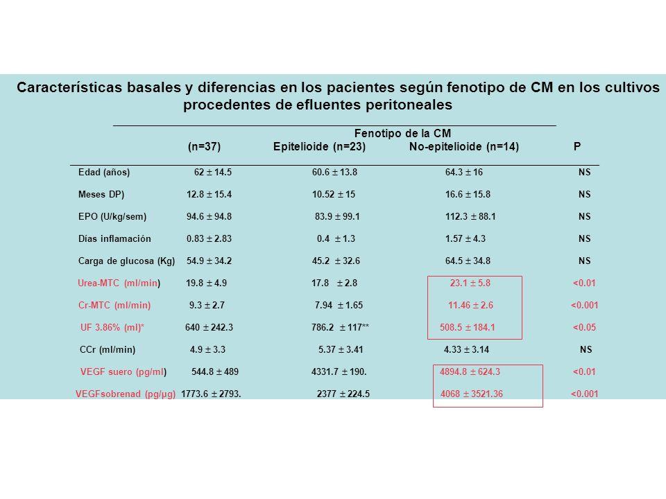 Características basales y diferencias en los pacientes según fenotipo de CM en los cultivos procedentes de efluentes peritoneales
