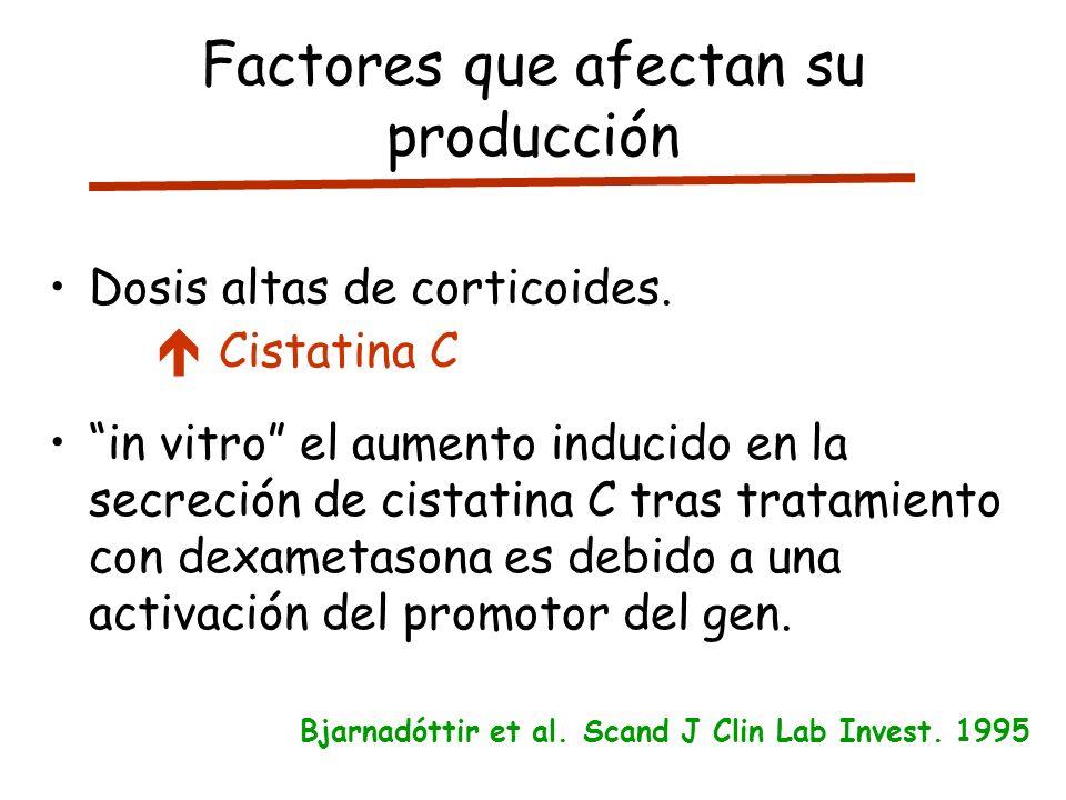 Factores que afectan su producción