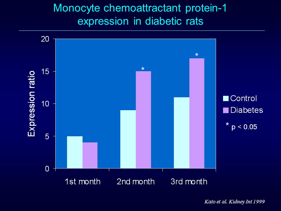 Monocyte chemoattractant protein-1 expression in diabetic rats