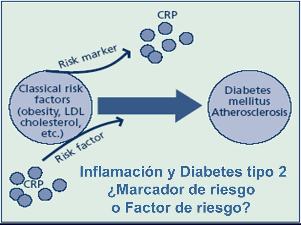 Inflamación y Diabetes tipo 2