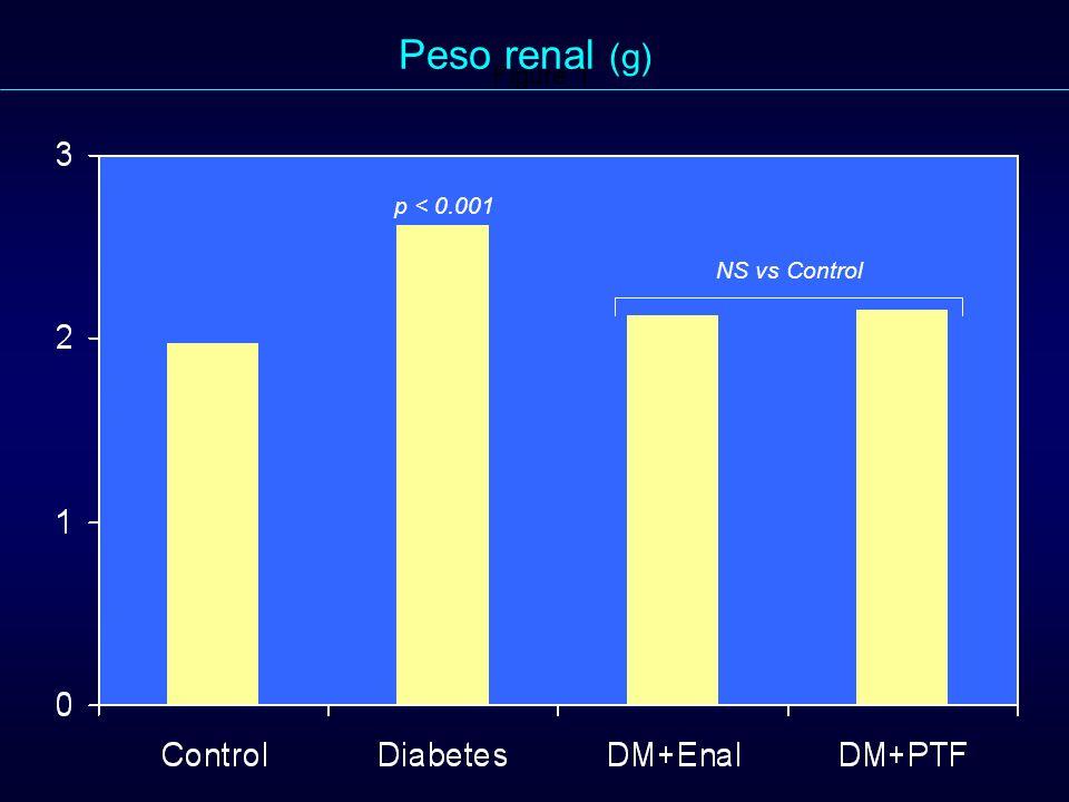 Peso renal (g) Figure 1. p < 0.001 NS vs Control