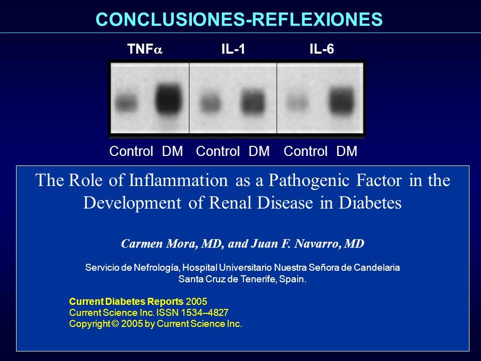 CONCLUSIONES-REFLEXIONES Carmen Mora, MD, and Juan F. Navarro, MD