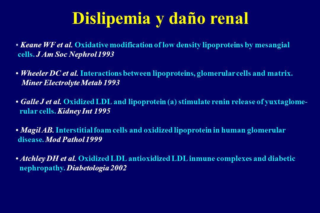 Dislipemia y daño renal