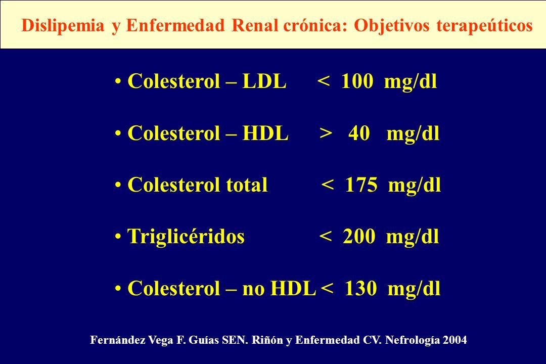 Dislipemia y Enfermedad Renal crónica: Objetivos terapeúticos