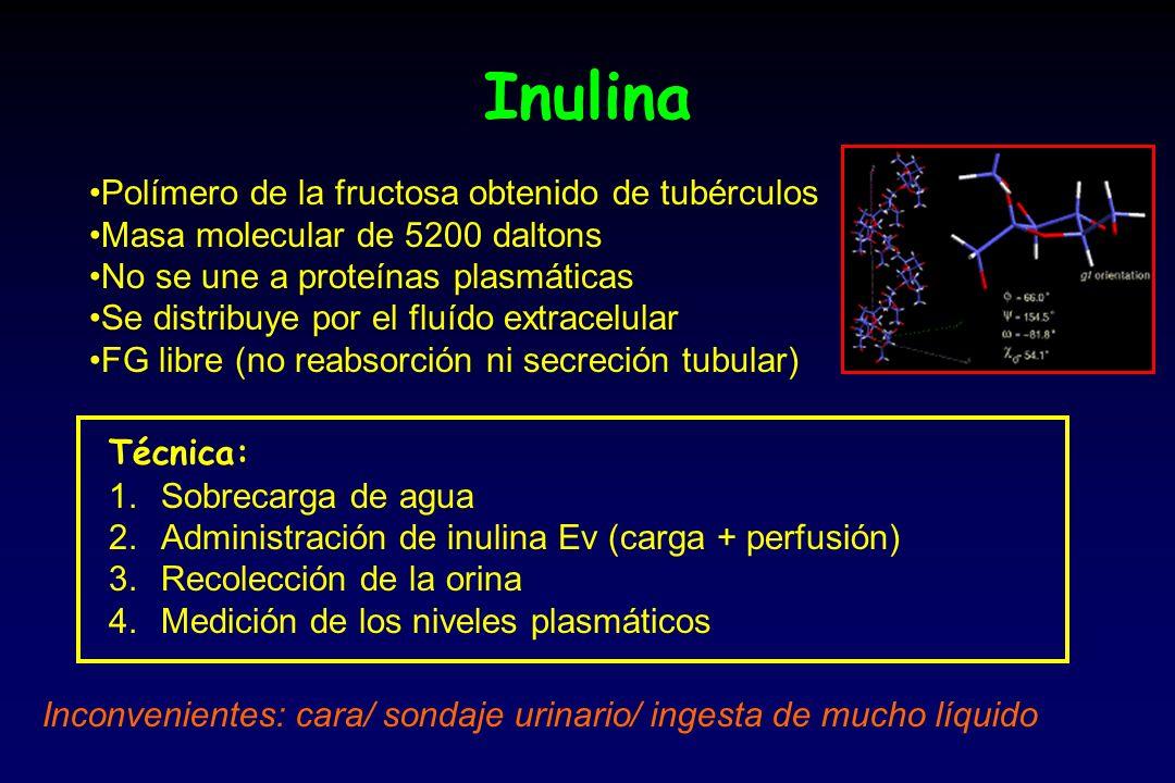 Inulina Polímero de la fructosa obtenido de tubérculos