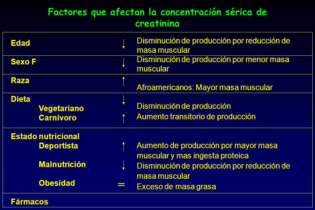 Factores que afectan la concentración sérica de creatinina