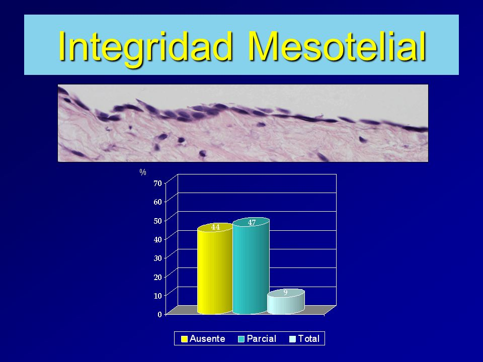 Integridad Mesotelial