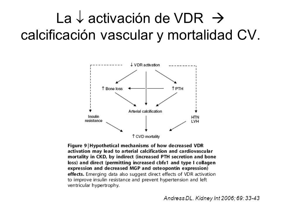 La  activación de VDR  calcificación vascular y mortalidad CV.