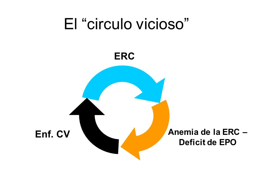 El circulo vicioso ERC Enf. CV Anemia de la ERC – Deficit de EPO