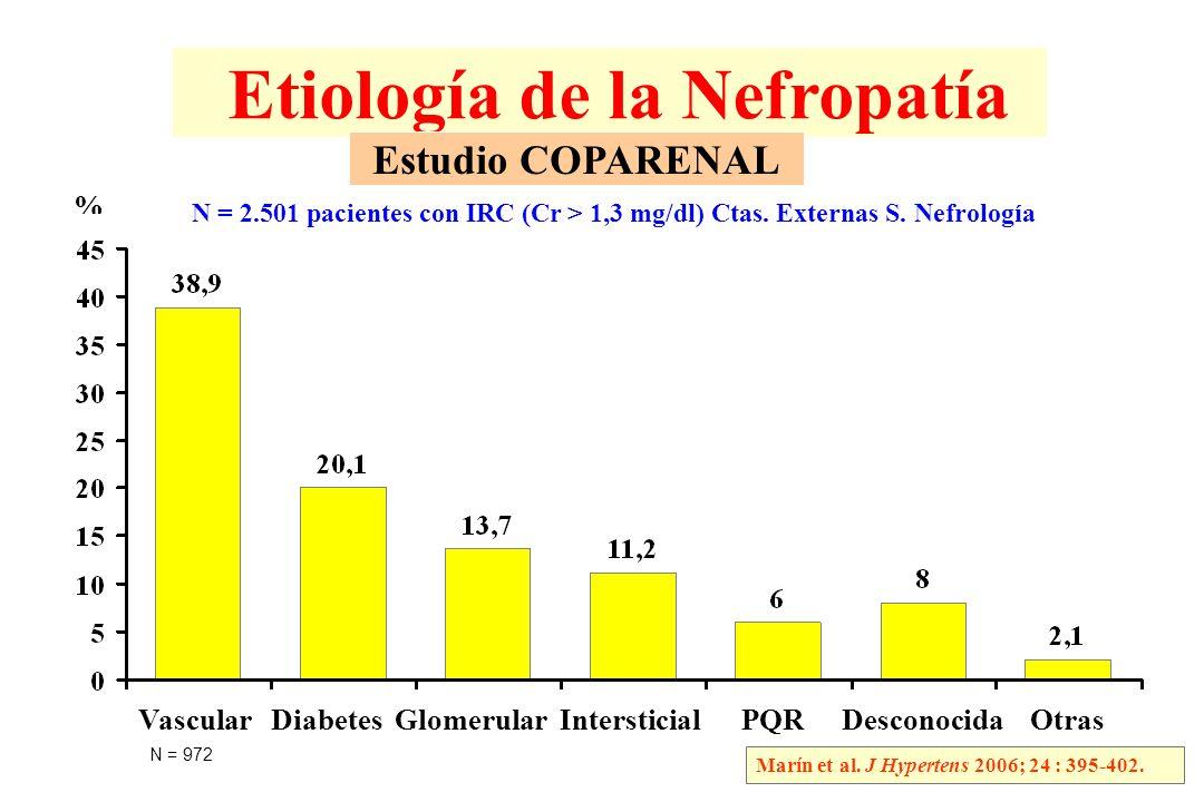 Etiología de la Nefropatía