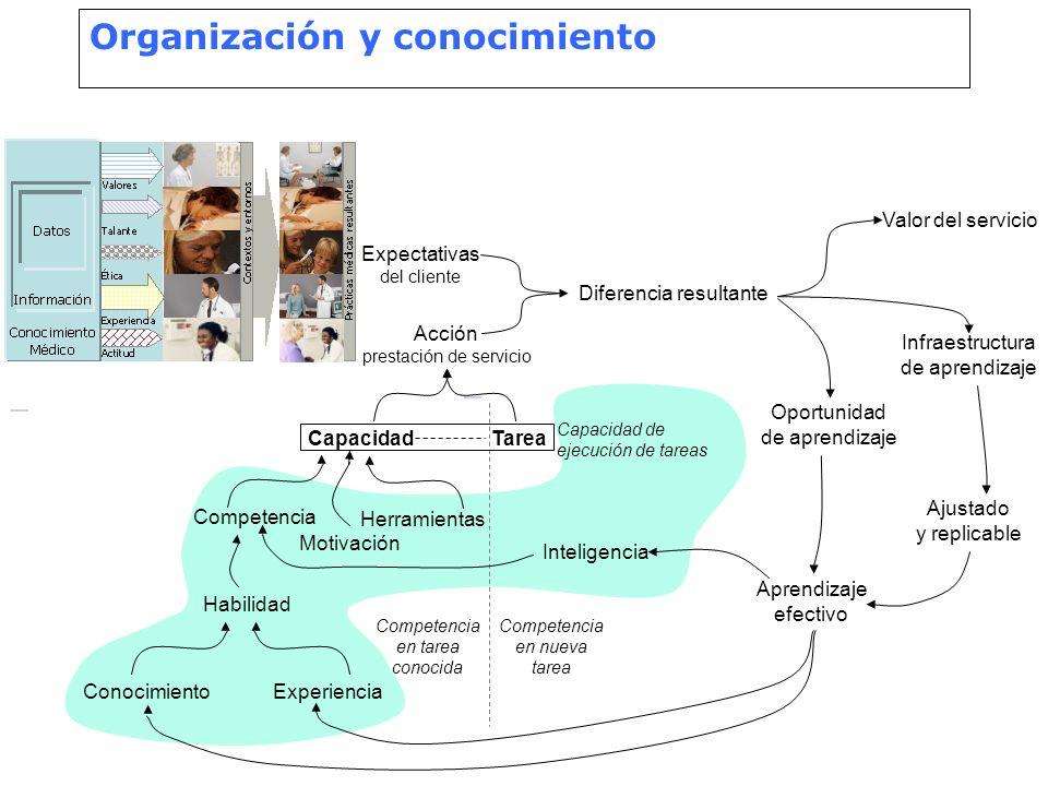 Organización y conocimiento