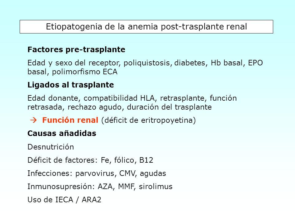 Etiopatogenia de la anemia post-trasplante renal