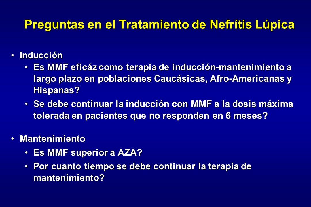 Preguntas en el Tratamiento de Nefrítis Lúpica